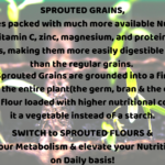 Sprouted Flours | Loaded with an ample of Nutrients & Vitamins!